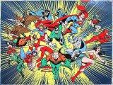 DC Comic Heroes Microfiber Plush Throw Blanket : (50x60)