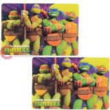 Teenage Mutant Ninja Turtles TMNT Dining Placemat 2pc Set