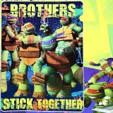 "TMNT Ninja Turtles Turtle Royal Plush Mink Blanket Twin 60"" x 80"" Stick Together"