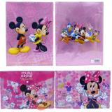 Mickey & Minnie Mouse Pink 2 PC  File Jacket /  Clear  Folder Set