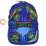 TMNT Ninja Turtles Turtle Baseball Cap Kids Hat - Group