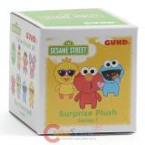Sesame Street Blind Box