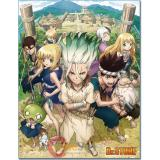DR Stone Key Art Sub Thorw Blanket