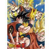 Dragon Ball Z Throw Blanket 3 Goku